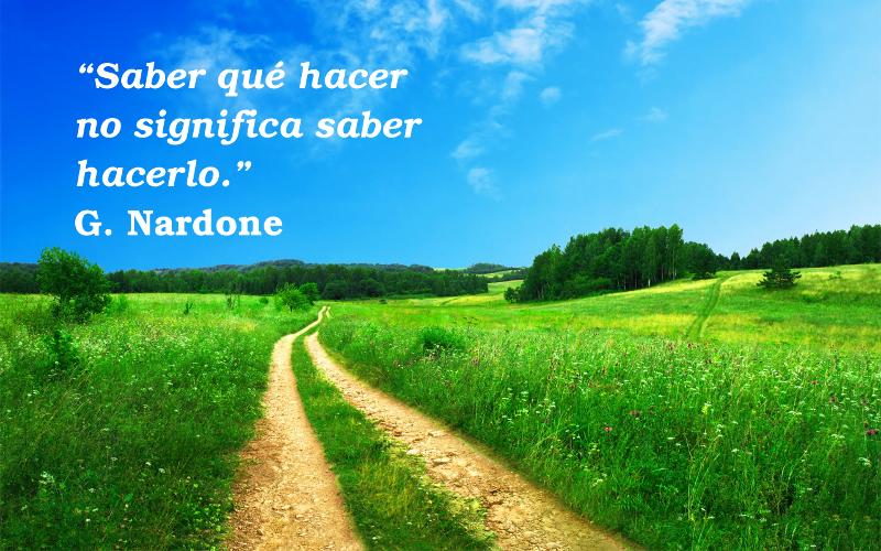 camino amarillo en el campo verde con cielo azul cita