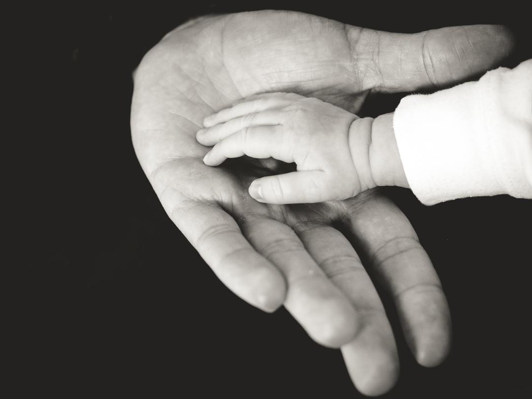 mano padre nino pequena