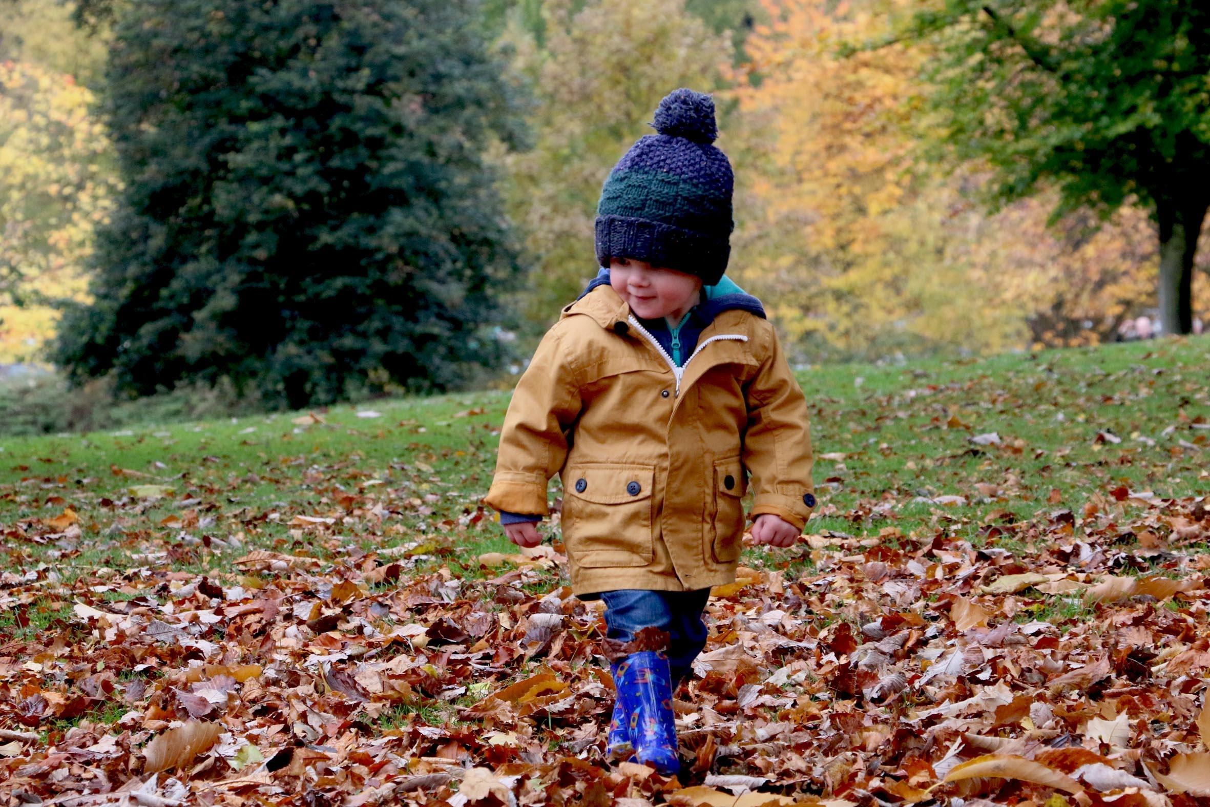 nino con gorro andando en las hojas de otono