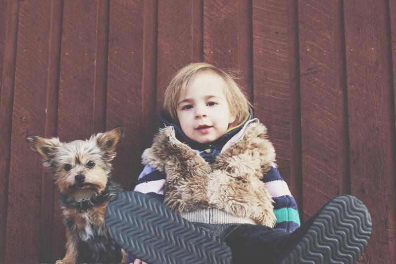 nino con chaleco y perro